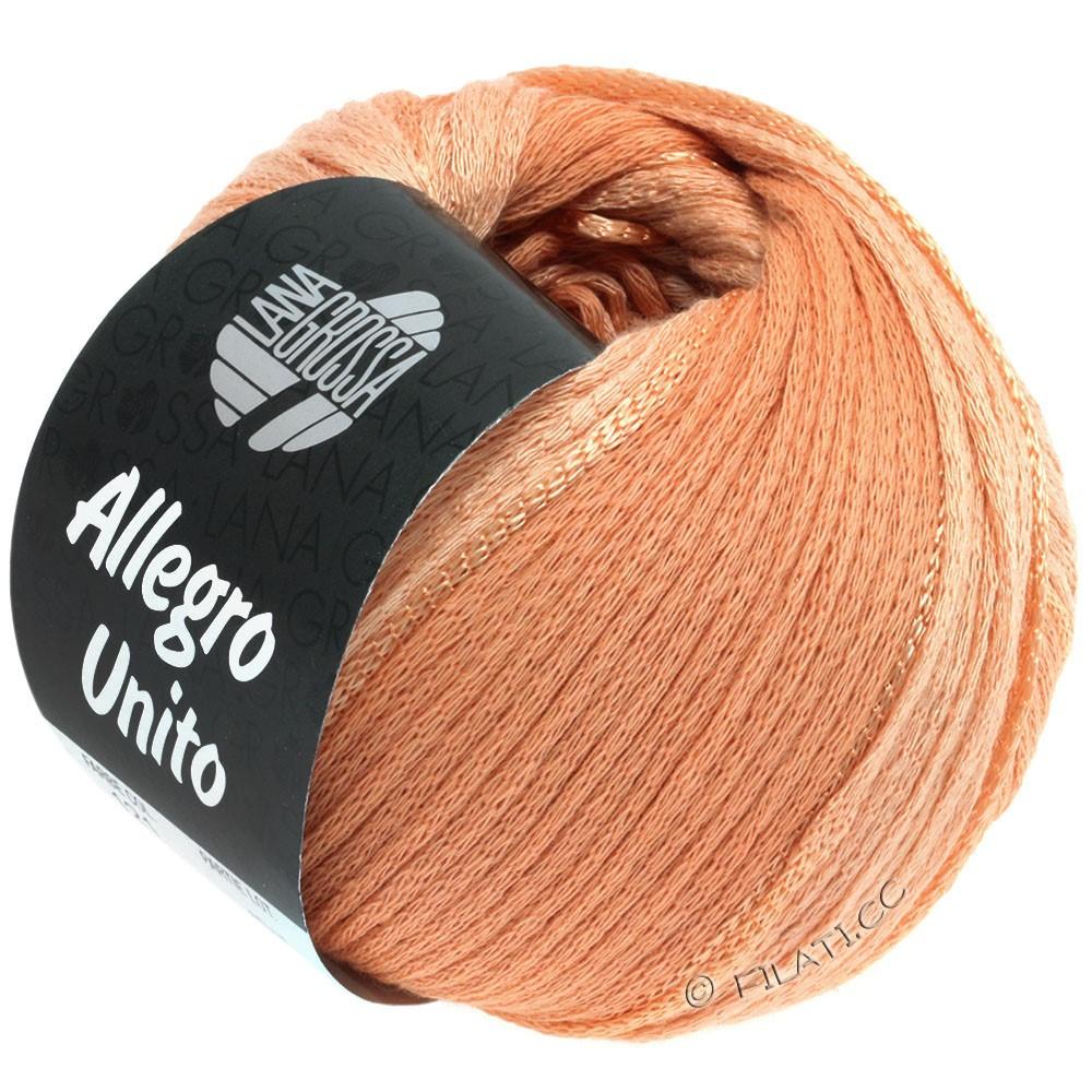 Lana Grossa ALLEGRO Unito | 121-peach
