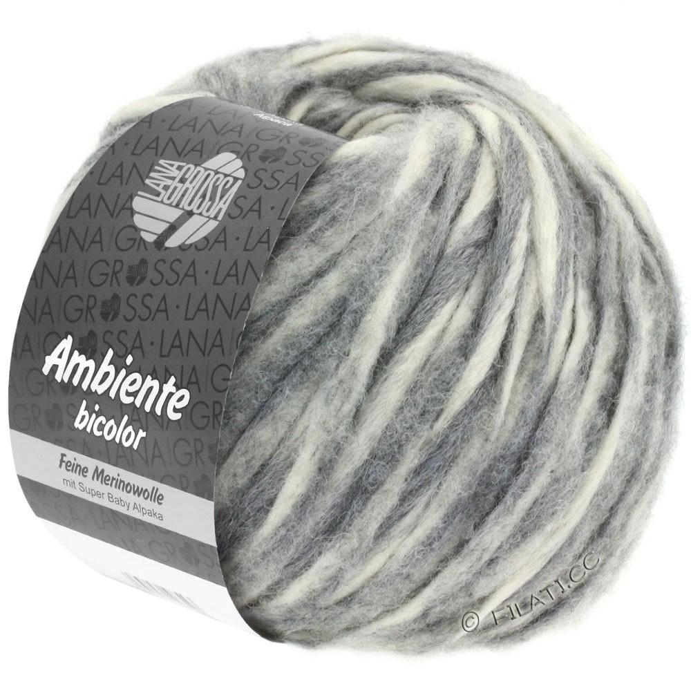 Lana Grossa AMBIENTE Bicolor | 101-raw white/gray