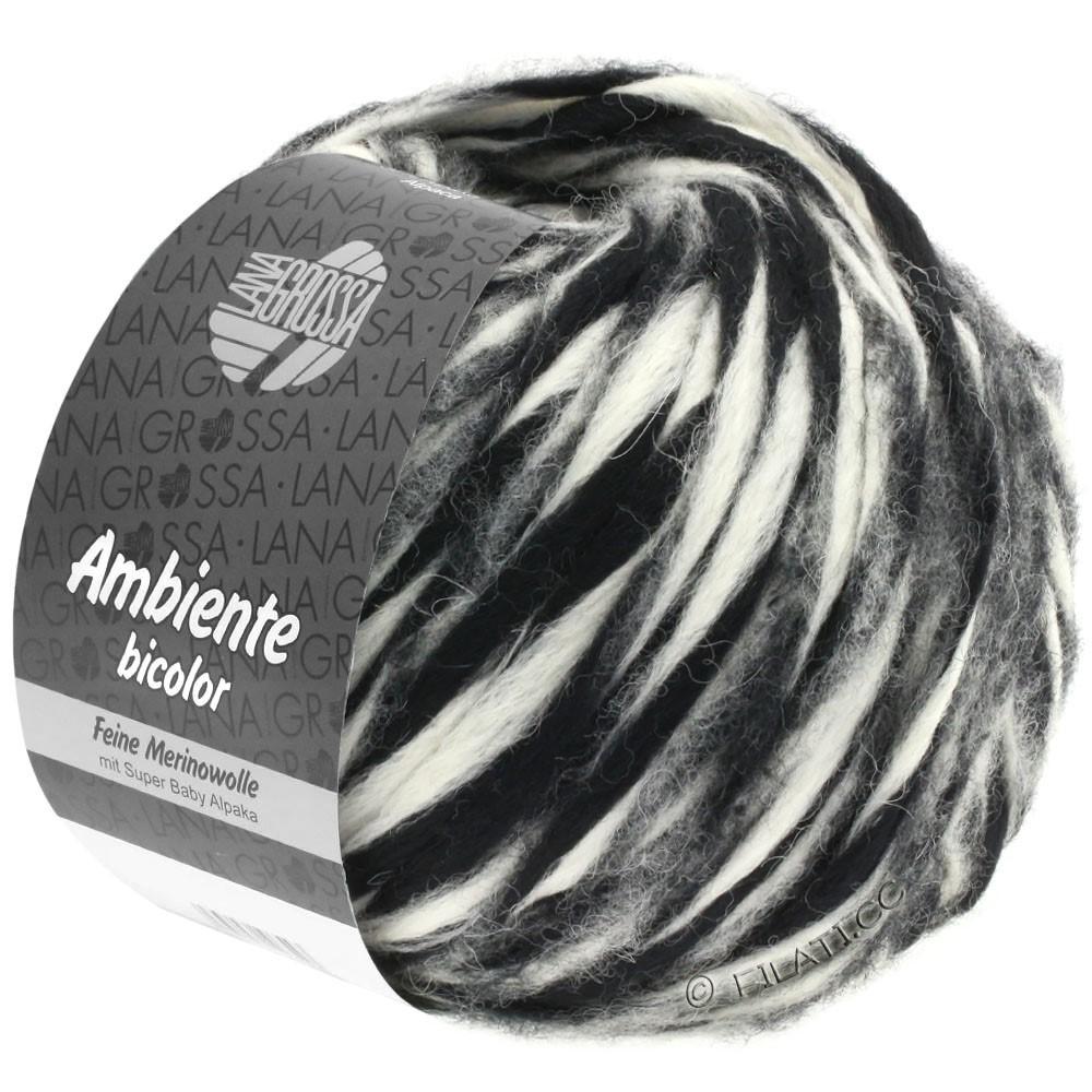 Lana Grossa AMBIENTE Bicolor | 105-black/raw white