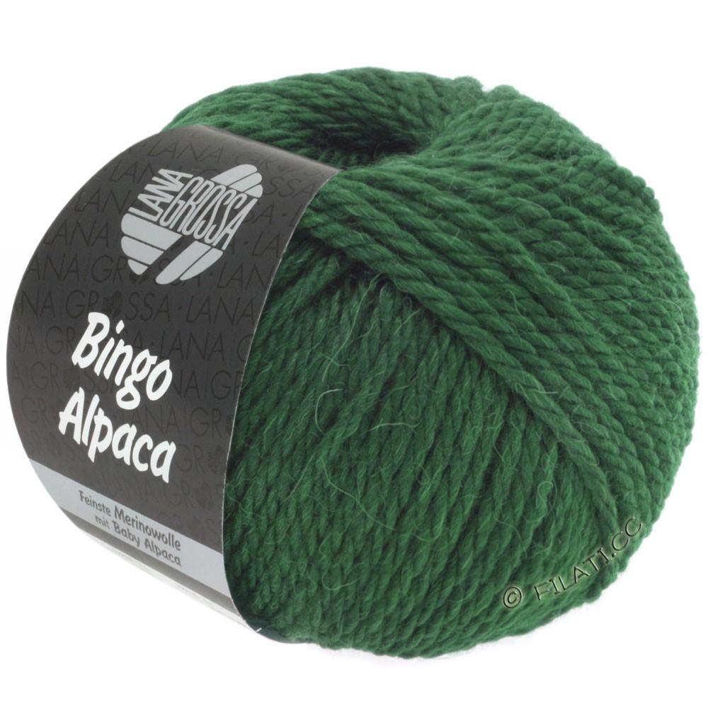 Lana Grossa BINGO ALPACA Uni | 10-dark green