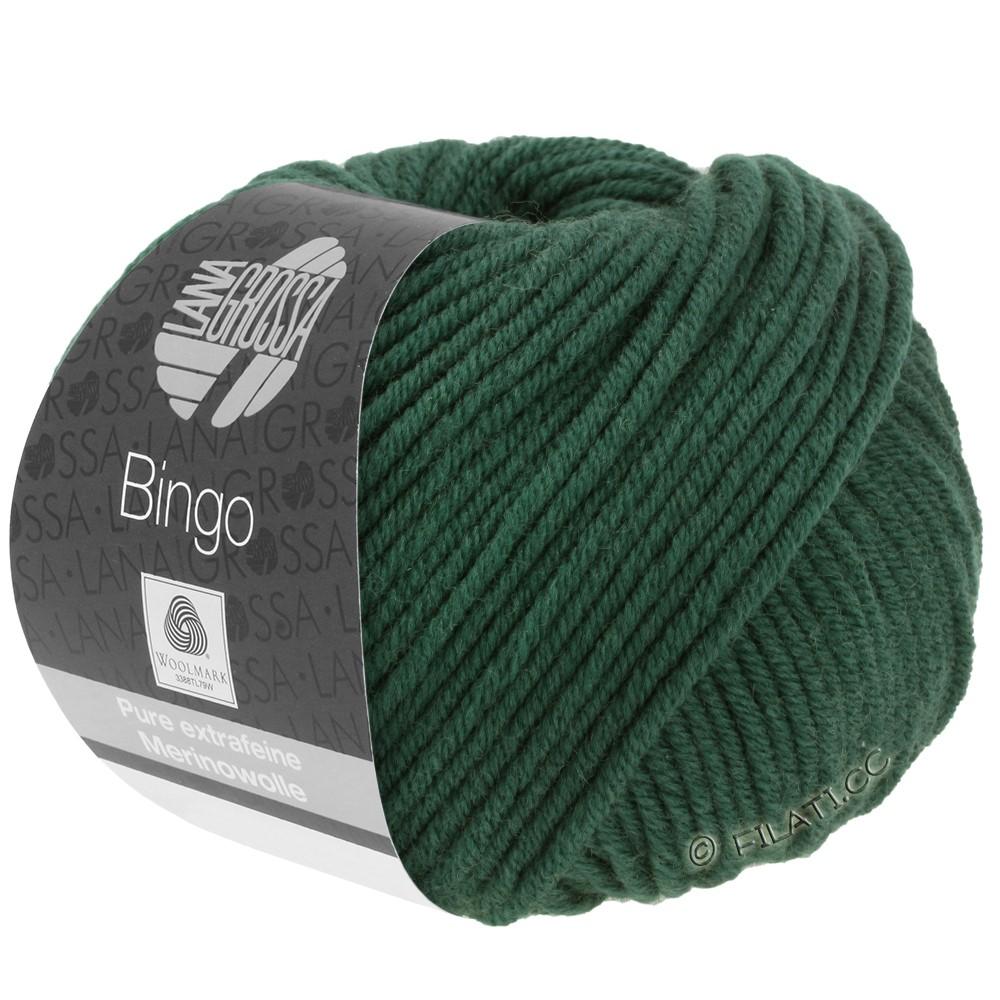Lana Grossa BINGO  Uni/Melange/Print | 189-dark green
