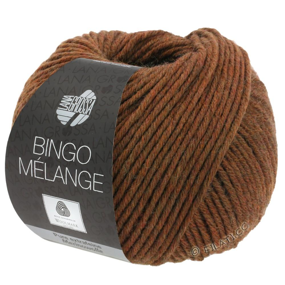 Lana Grossa BINGO  Uni/Melange/Print | 241-chestnut mottled