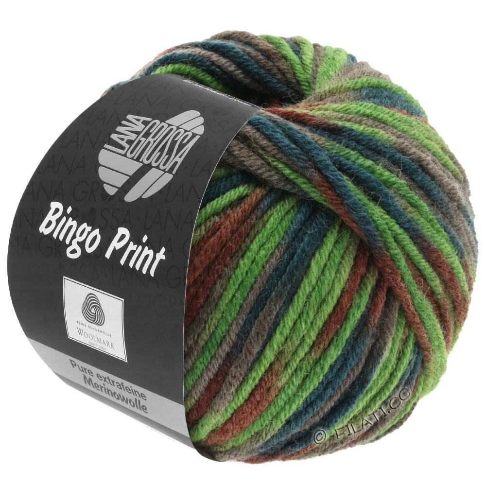 Lana Grossa BINGO  Uni/Melange/Print | 368-light green/khaki/chestnut/dark green