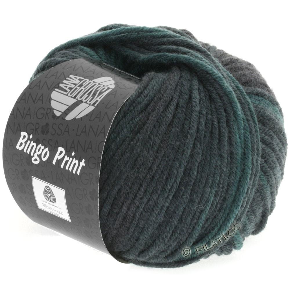 Lana Grossa BINGO  Uni/Melange/Print | 611-fir/gray green/black