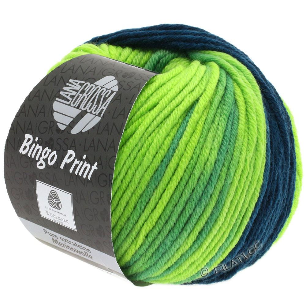 Lana Grossa BINGO  Uni/Melange/Print | 620-petrol/pistachio/light green