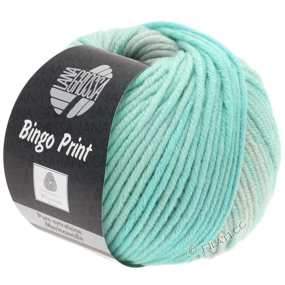 Lana Grossa BINGO  Uni/Melange/Print | 627-pale green/subtle green/silver gray