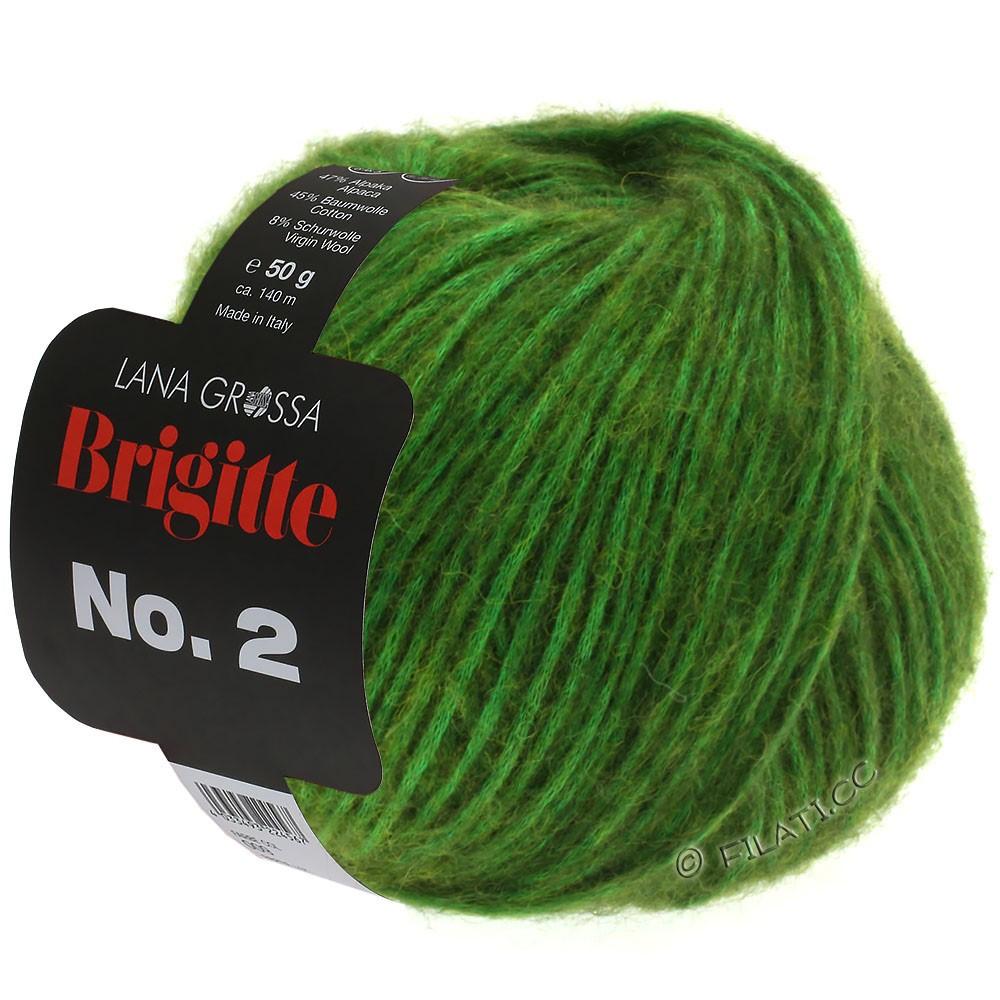 Lana Grossa BRIGITTE NO. 2 | 01-green