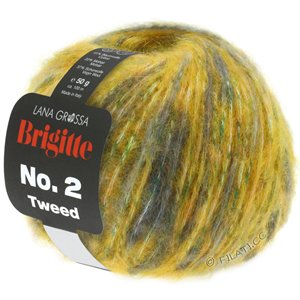 Lana Grossa BRIGITTE NO. 2 Tweed | 108-golden yellow/green/petrol