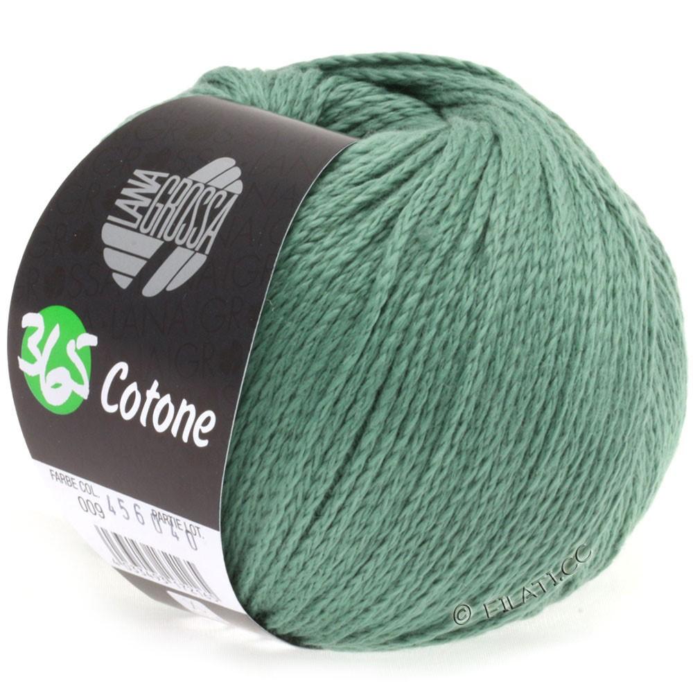 Lana Grossa 365 COTONE | 09-gray green