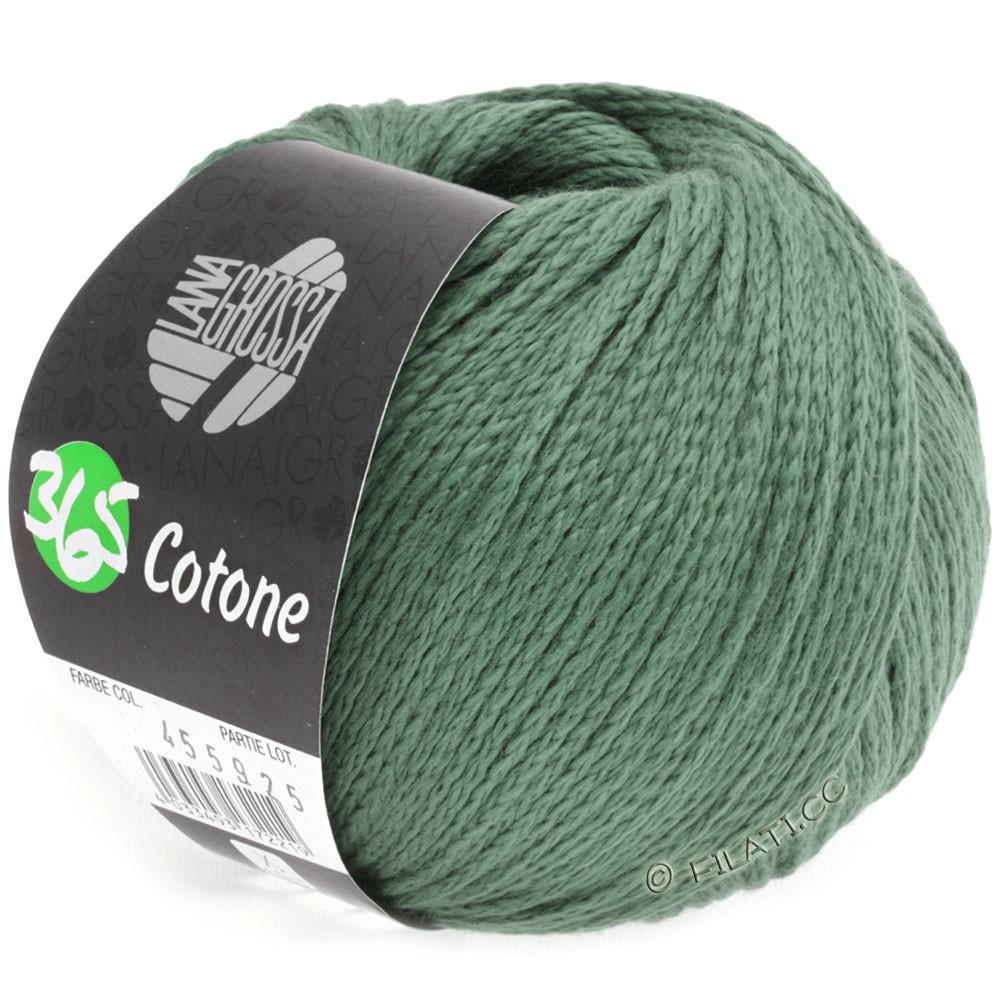 Lana Grossa 365 COTONE | 30-reseda green