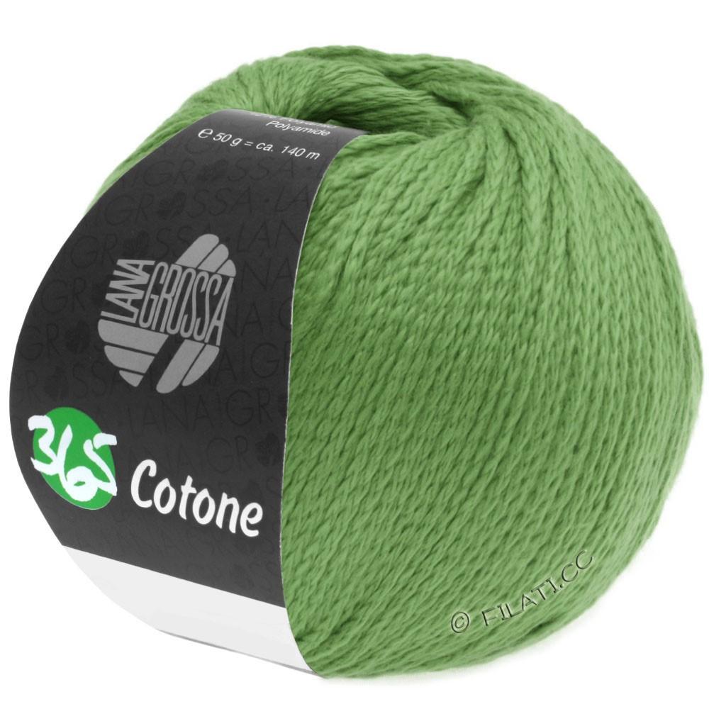 Lana Grossa 365 COTONE | 46-light green
