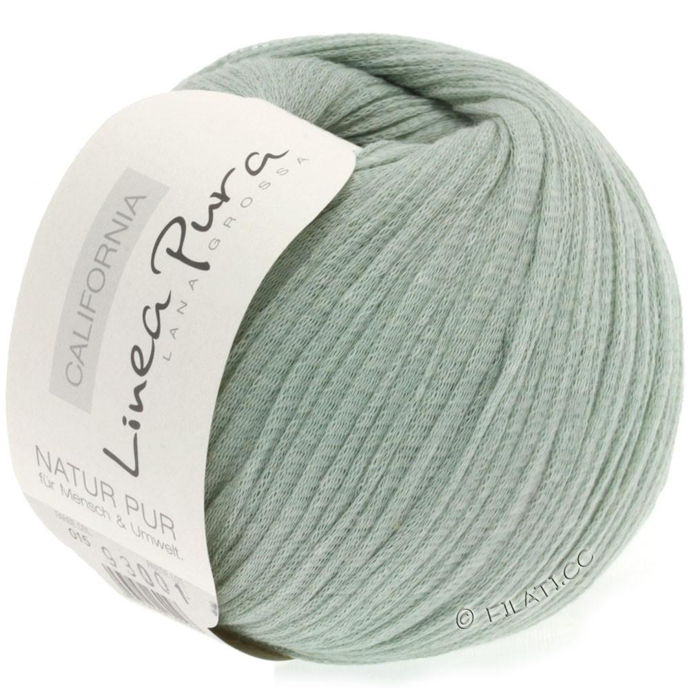 Lana Grossa CALIFORNIA Uni/Print (Linea Pura) | 015-gray green