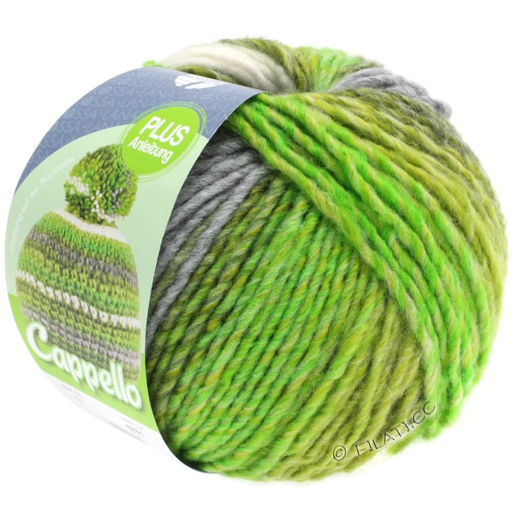 Lana Grossa CAPPELLO | 107-yellow/green/white/gray mottled