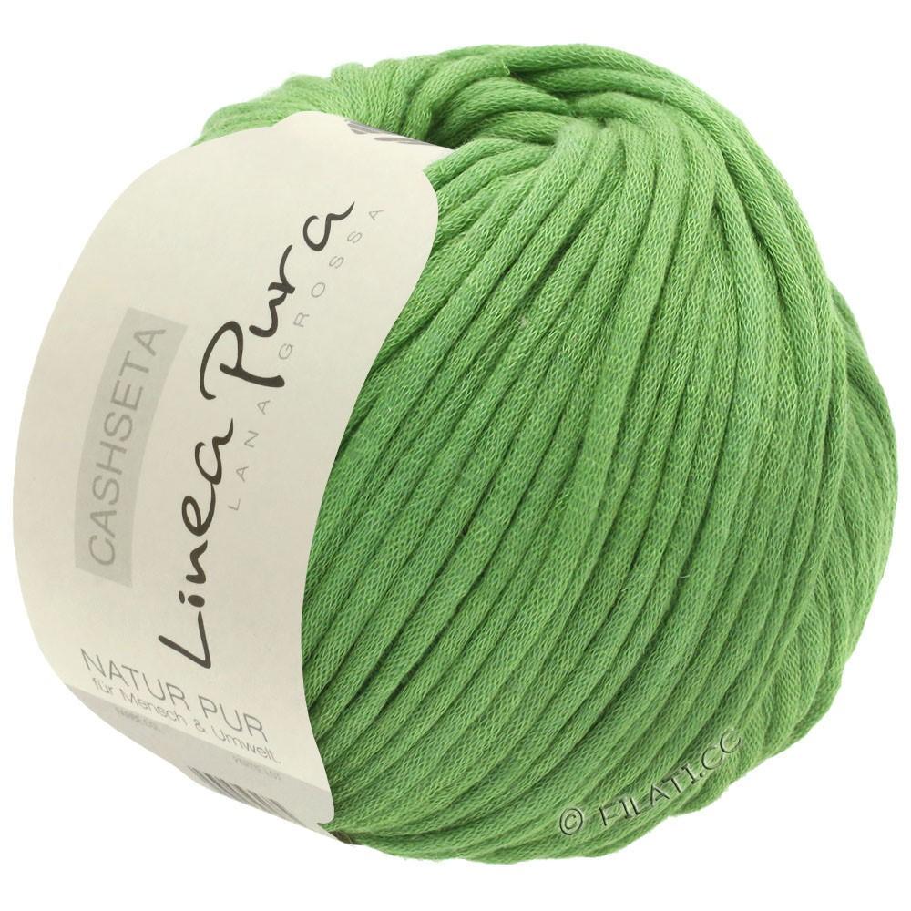 Lana Grossa CASHSETA (Linea Pura) | 01-light green