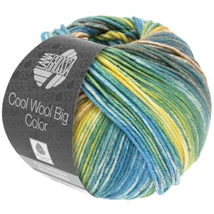 Lana Grossa COOL WOOL Big Color | 4020-gray green/camel/yellow/ecru/reseda green/petrol