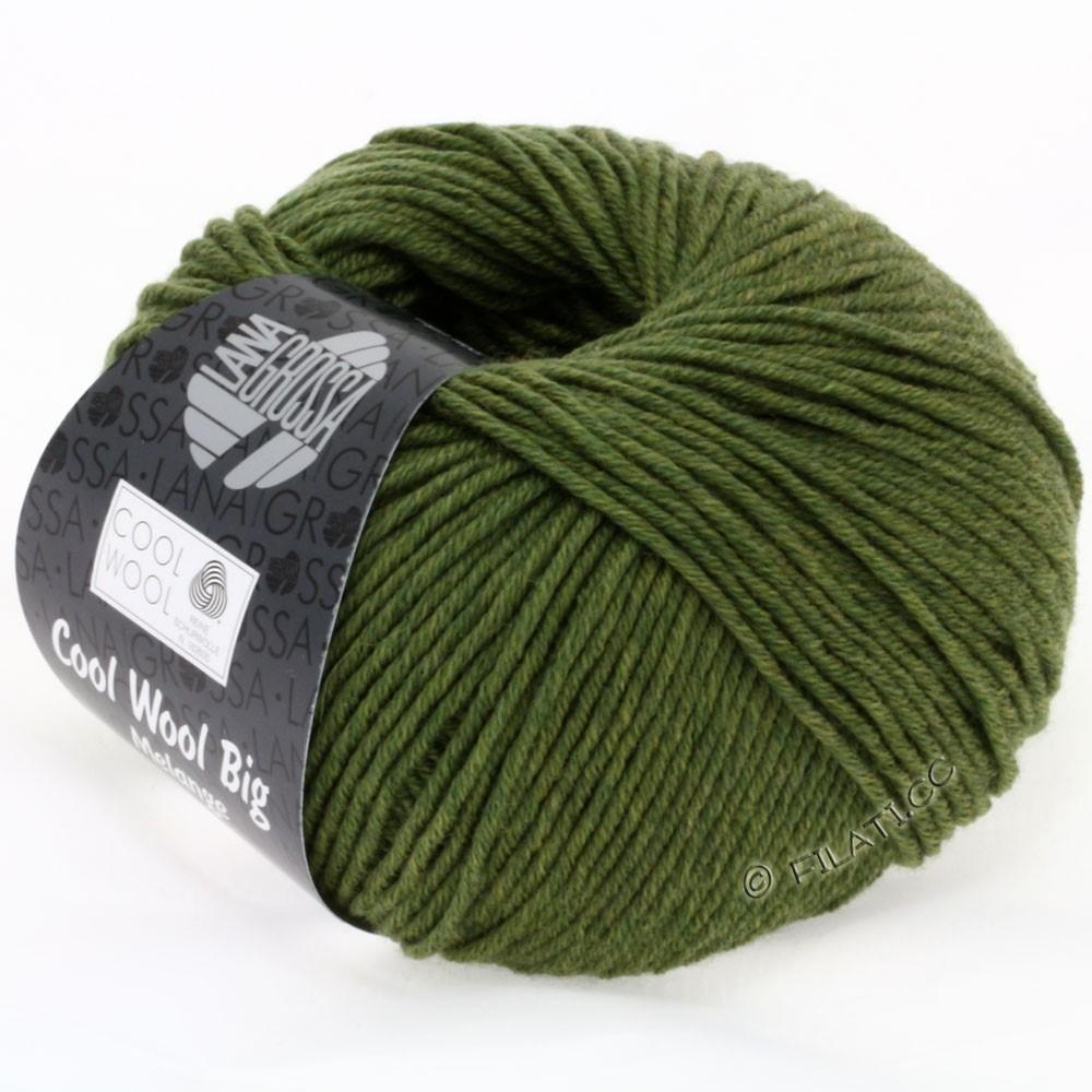 Lana Grossa COOL WOOL Big Uni/Melange/Print   0301-olive green mottled