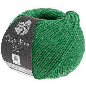 Lana Grossa COOL WOOL Big  Uni/Melange | 0939-dark green