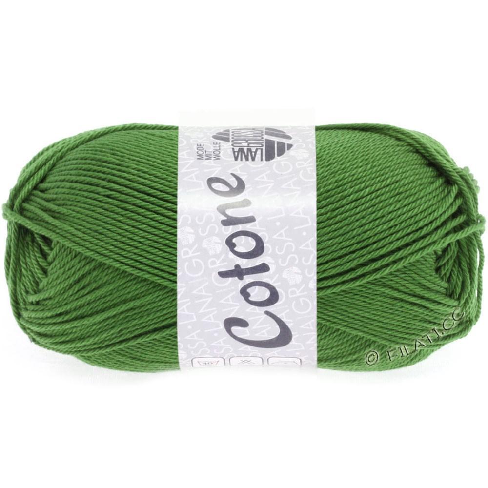 Lana Grossa COTONE Uni | 54-fern green