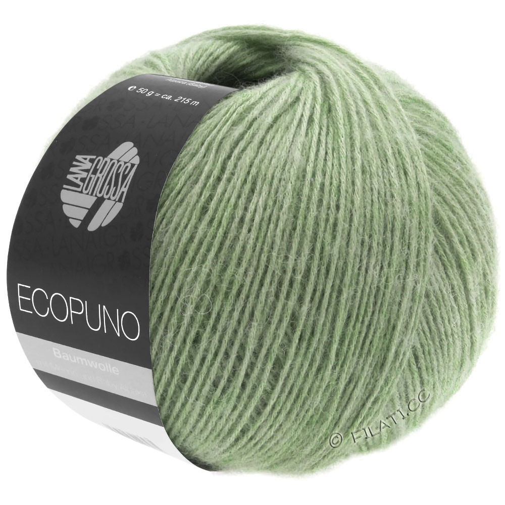 Lana Grossa ECOPUNO   20-light green