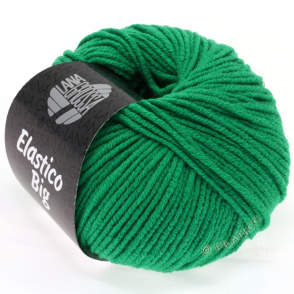 Lana Grossa ELASTICO Big | 31-emerald