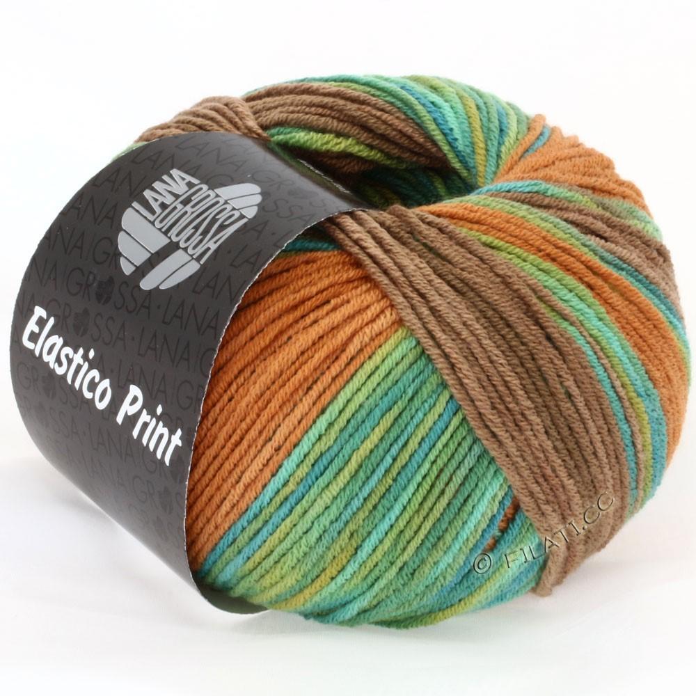 Lana Grossa ELASTICO  Uni/Print   509-green/turkoois//fawn brown/nougat