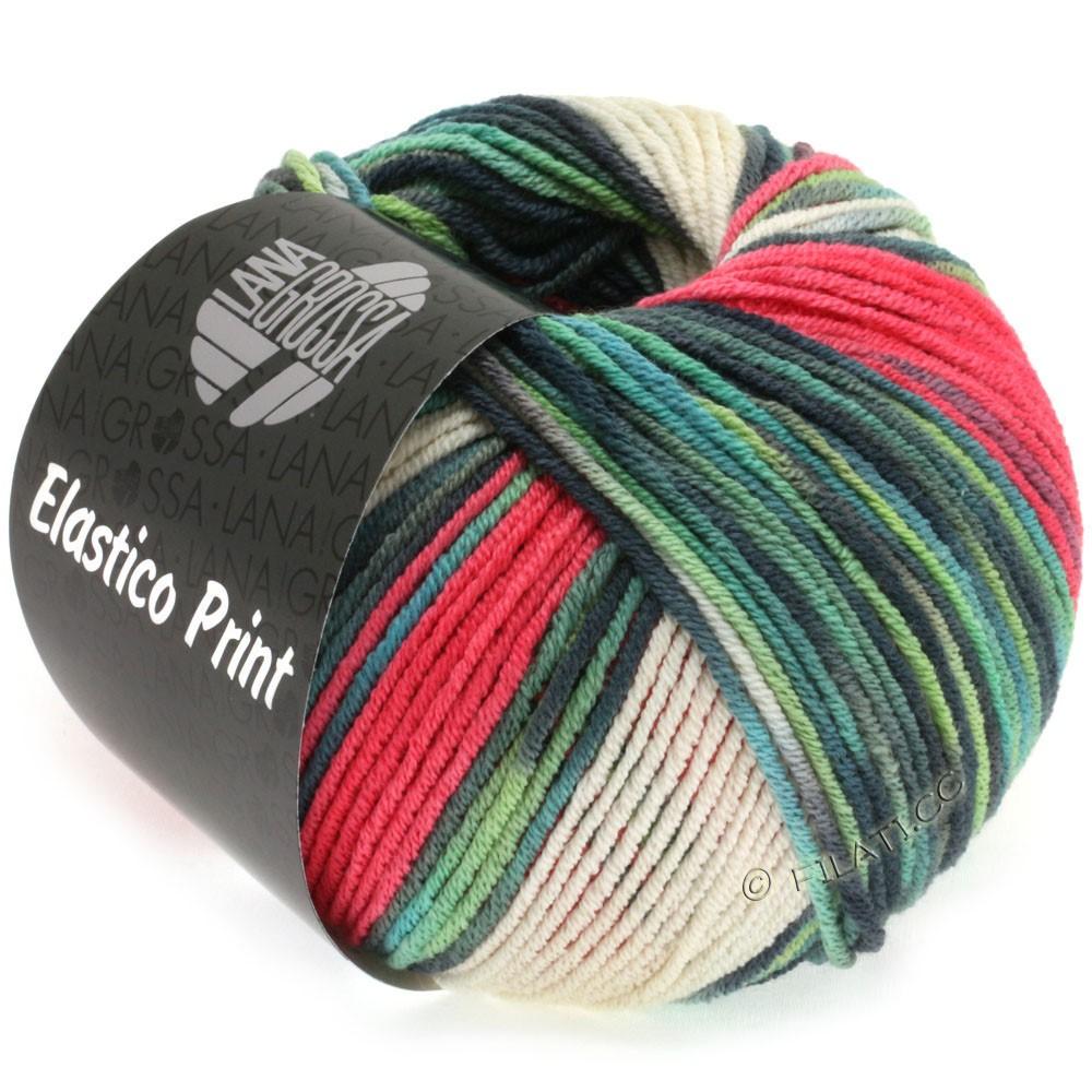 Lana Grossa ELASTICO  Uni/Print | 513-raspberry/natural/mint/light gray/gray green/petrol
