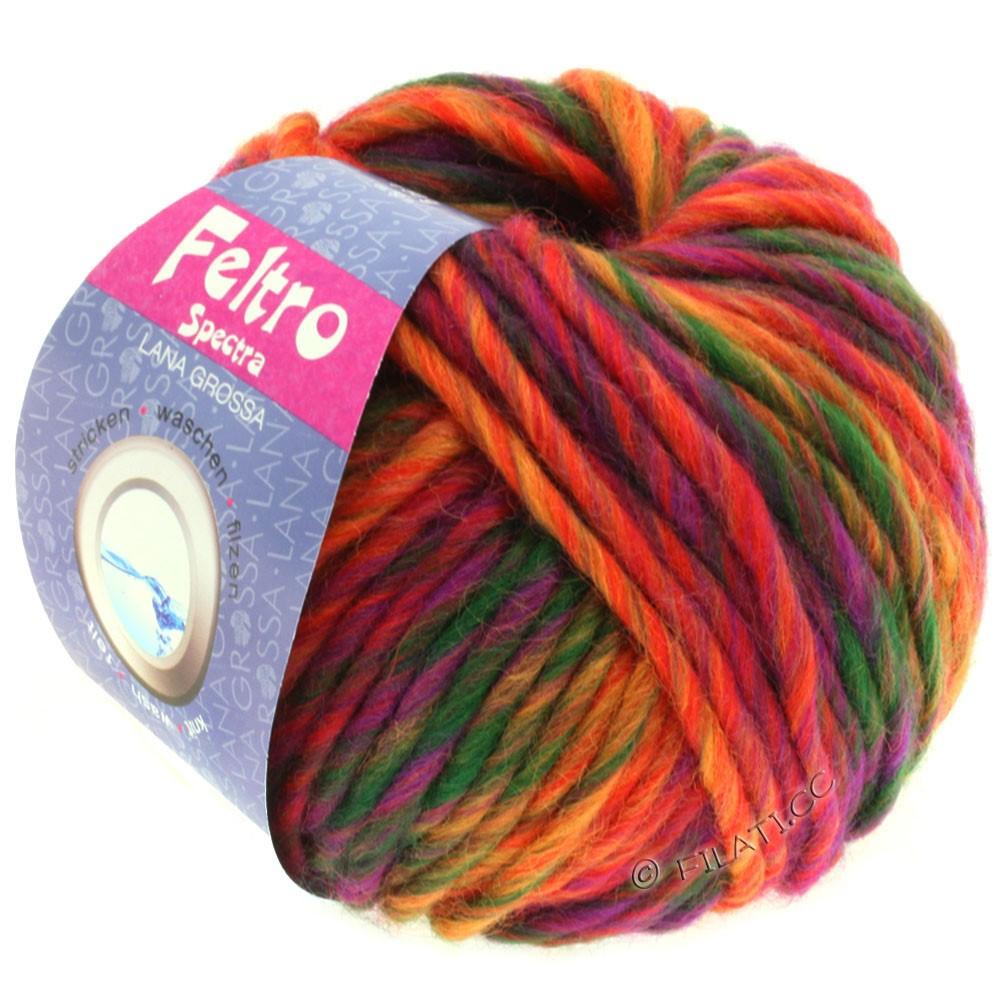 Lana Grossa FELTRO Spectra | 805-red/orange/purple/bottle green