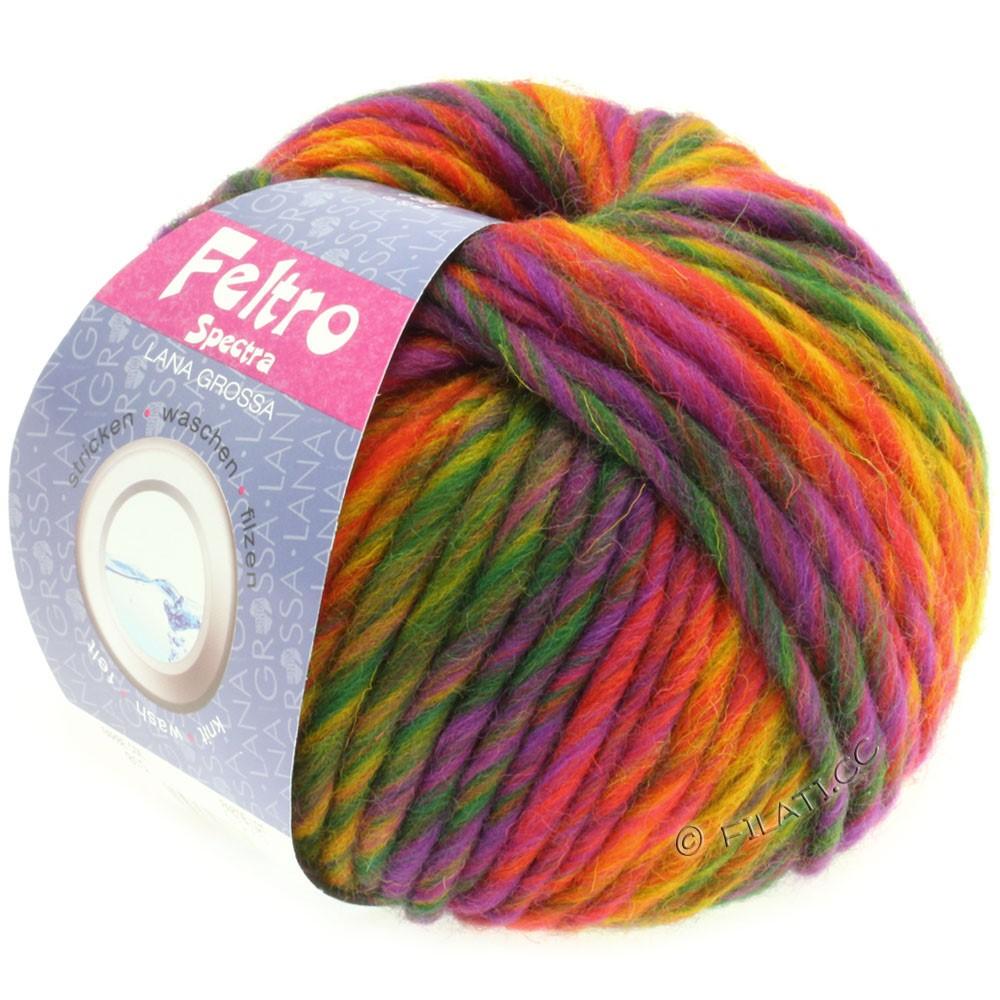 Lana Grossa FELTRO Spectra | 815-yellow/orange/red/violet/green