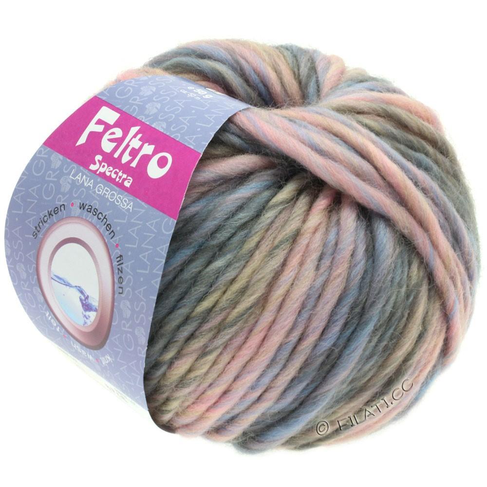 Lana Grossa FELTRO Spectra | 817-rose/light blue/gray/taupe