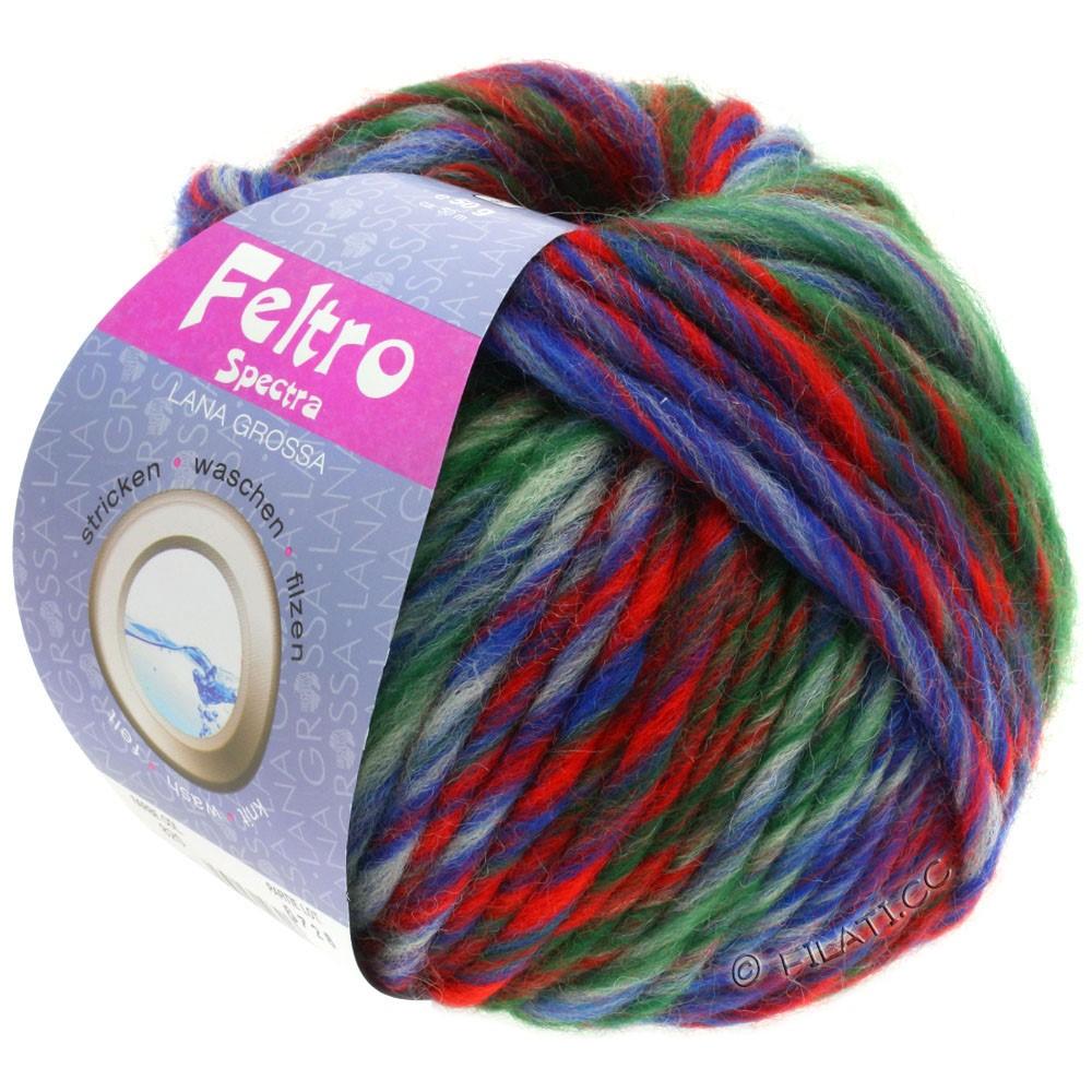 Lana Grossa FELTRO Spectra | 820-blue/raw white/red/dark green