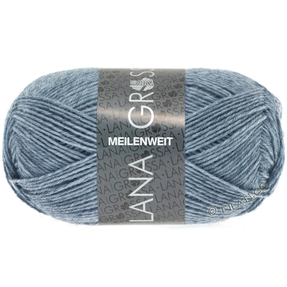 Lana Grossa MEILENWEIT 50g Uni | 1302-gray blue mottled