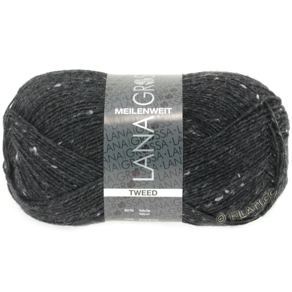 Lana Grossa MEILENWEIT 100g Tweed | 107-anthracite