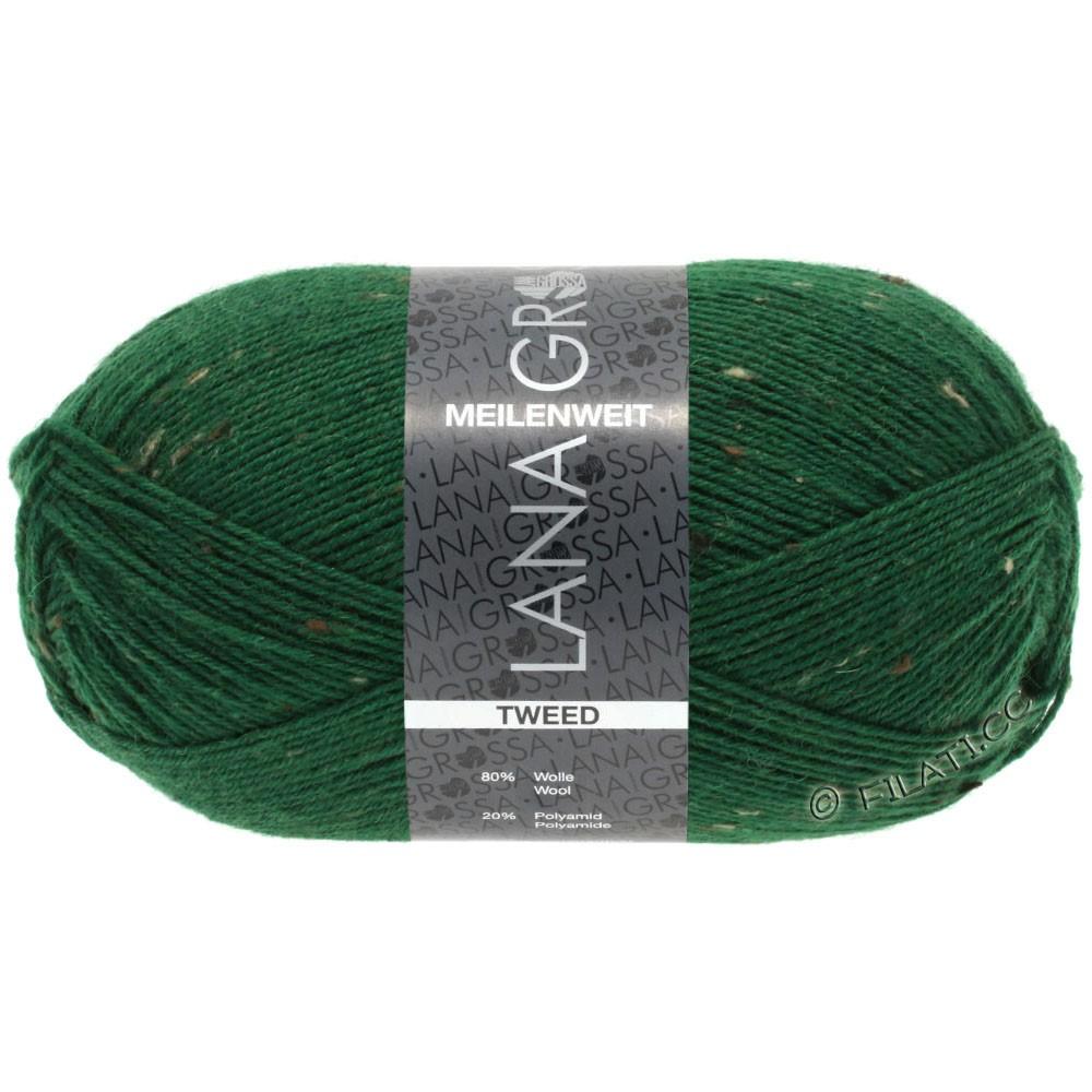 Lana Grossa MEILENWEIT 100g Tweed | 150-green