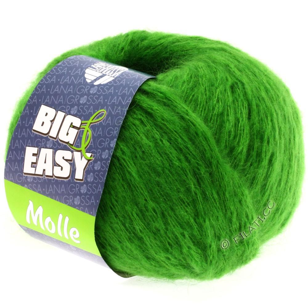 Lana Grossa MOLLE 100g (Big & Easy) | 08-green
