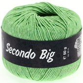 Lana Grossa SECONDO Big | 604-light leave green