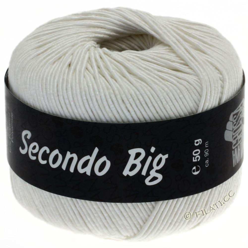 Lana Grossa SECONDO Big | 608-white