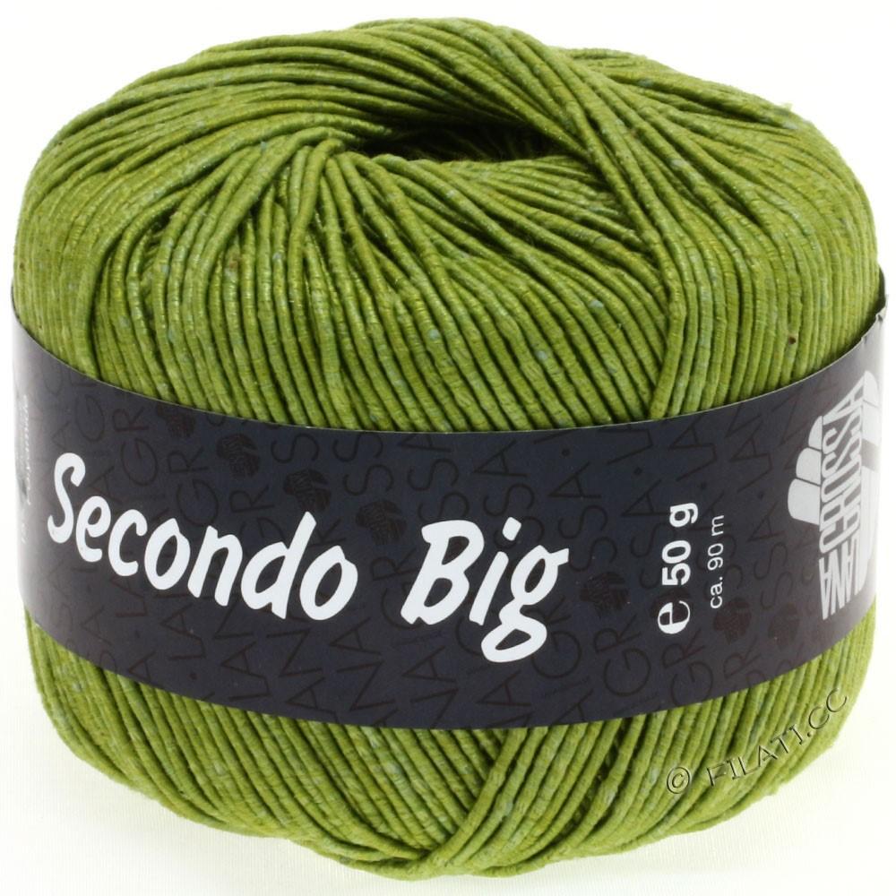 Lana Grossa SECONDO Big | 613-olive