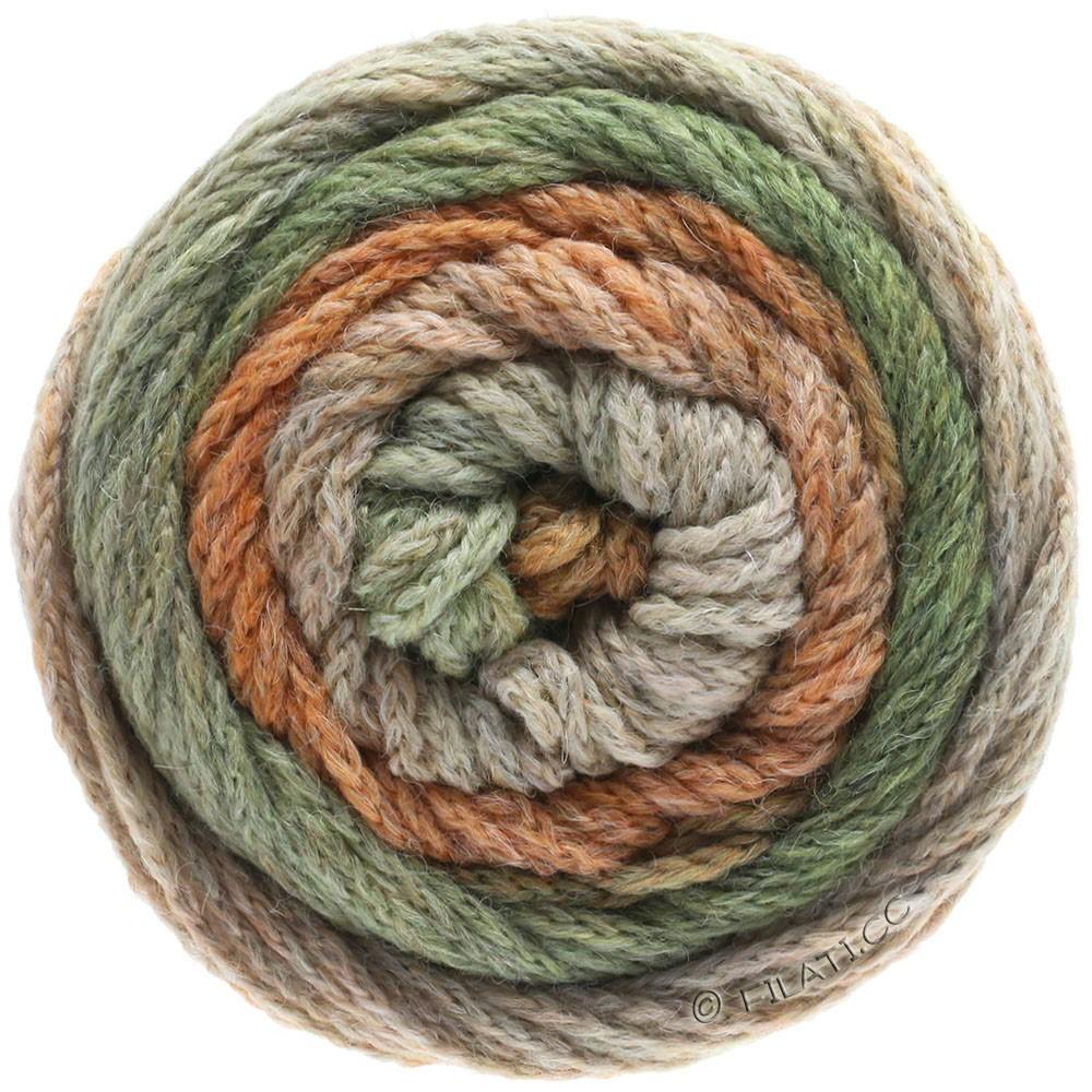 Lana Grossa SUPER COLOR | 113-beige/camel/gray green/light orange