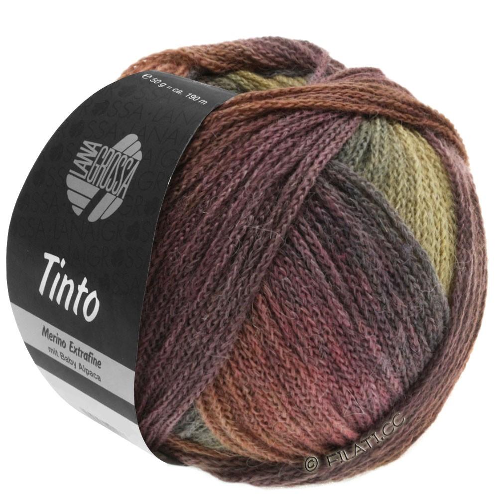 Lana Grossa TINTO | 08-chocolate-/nut-brown/mustard/gray green/berry/aubergine/plum