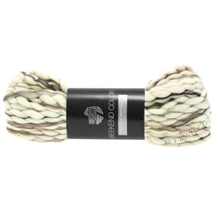 Lana Grossa WEEKEND Color | 105-raw white/olive/gray brown