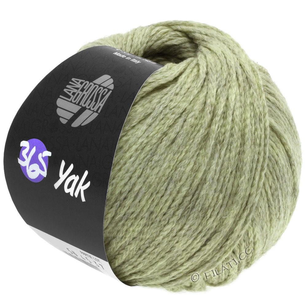 Lana Grossa 365 YAK | 19-pale green/gray
