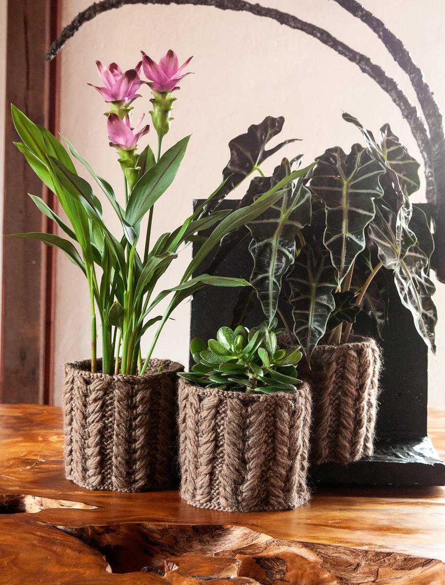 Planter Cover